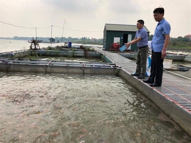 Bắc Ninh ứng dụng công nghệ cao trong nuôi trồng thủy sản